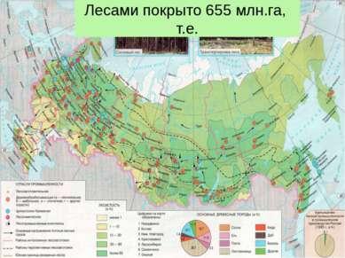 Лесами покрыто 655 млн.га, т.е. (45% территории России)