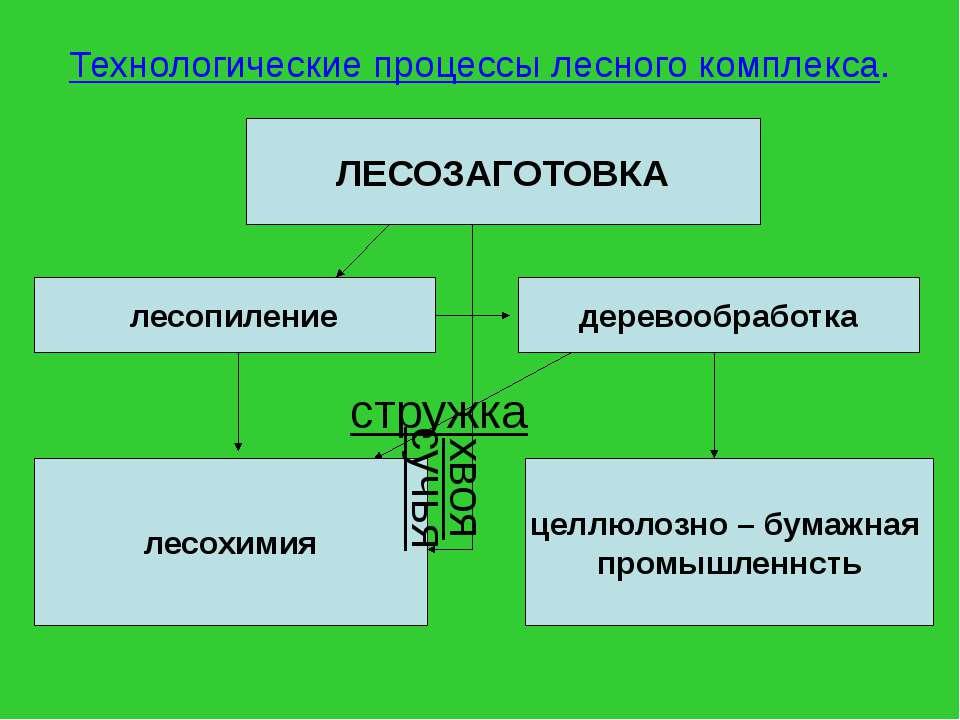 Технологические процессы лесного комплекса. ЛЕСОЗАГОТОВКА лесопиление деревоо...