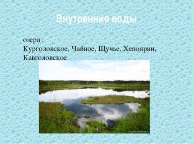 Внутренние воды озера : Курголовское, Чайное, Щучье, Хепоярви, Кавголовское