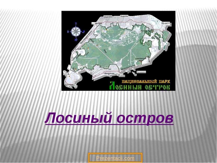 Лосиный остров Prezentacii.com