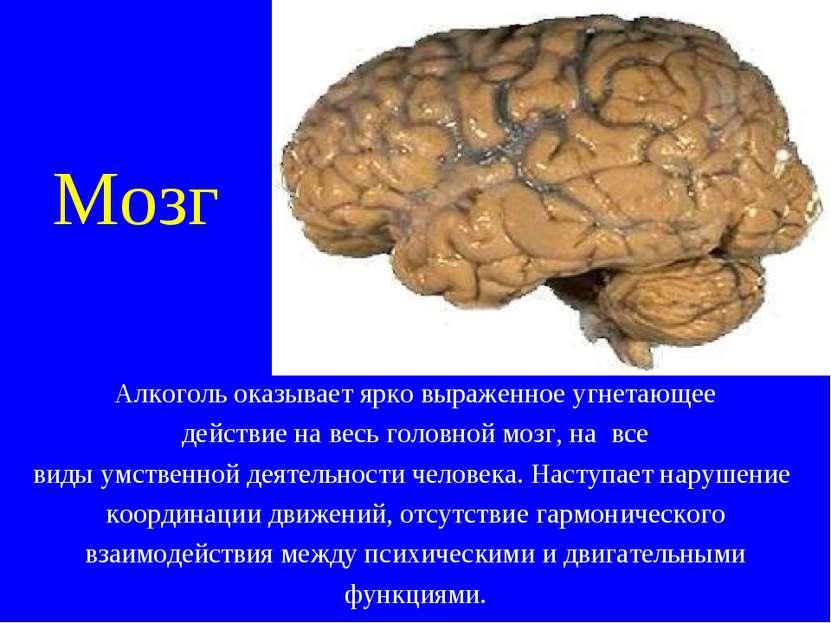Воздействие на мозг при алкоголизме