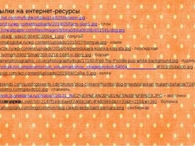 http://myfirstchat.com/myfirstworld/aug14/8258enepin.jpg - лошадь http://fact...