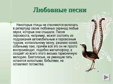 Любовные песни Некоторые птицы не стесняются включать в репертуар своих любов...