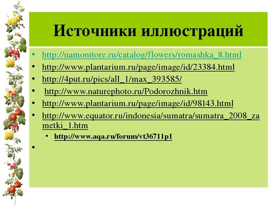 Источники иллюстраций http://namonitore.ru/catalog/flowers/romashka_8.html ht...