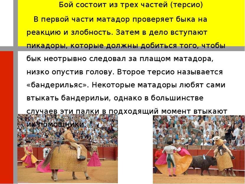 Бой состоит из трех частей (терсио) В первой части матадор проверяет быка на ...