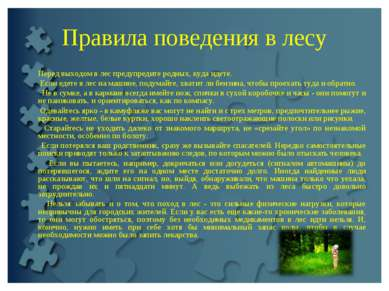 Правила поведения в лесу Перед выходом в лес предупредите родных, куда идете....