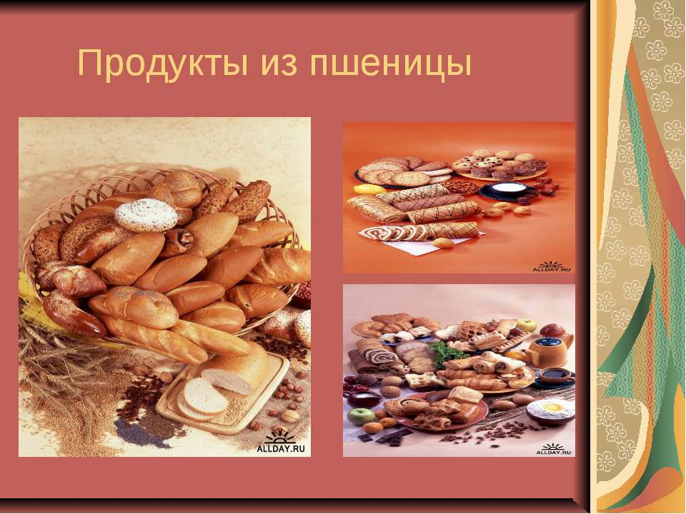 Продукты из пшеницы