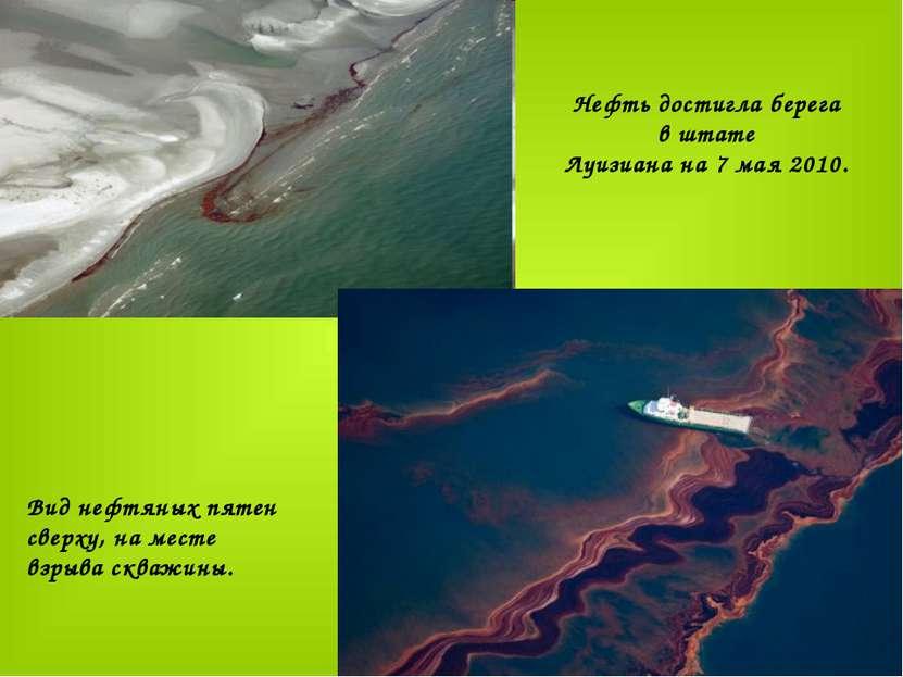 Нефть достигла берега в штате Луизиана на 7 мая 2010. ...