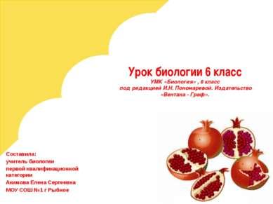 Урок биологии 6 класс УМК «Биология» , 6 класс под редакцией И.Н. Пономаревой...