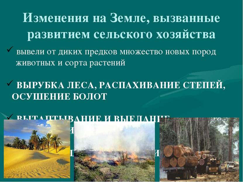 Изменения на Земле, вызванные развитием сельского хозяйства вывели от диких п...