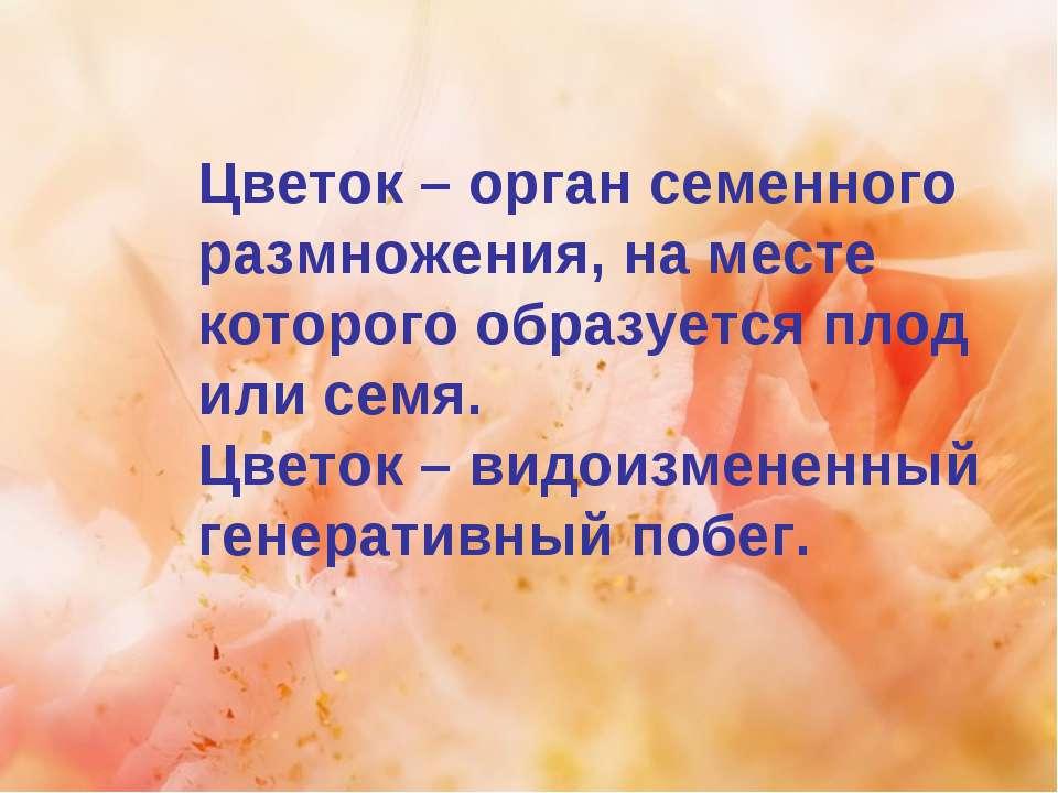 Цветок – орган семенного размножения, на месте которого образуется плод или с...