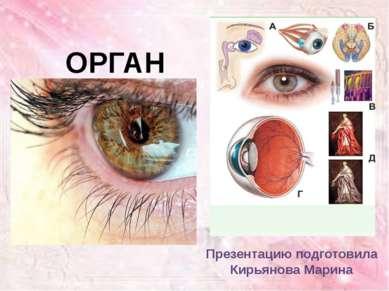 ОРГАН ЗРЕНИЯ Презентацию подготовила Кирьянова Марина