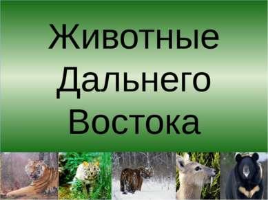 Животные Дальнего Востока