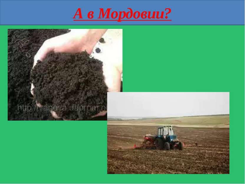 А в Мордовии?