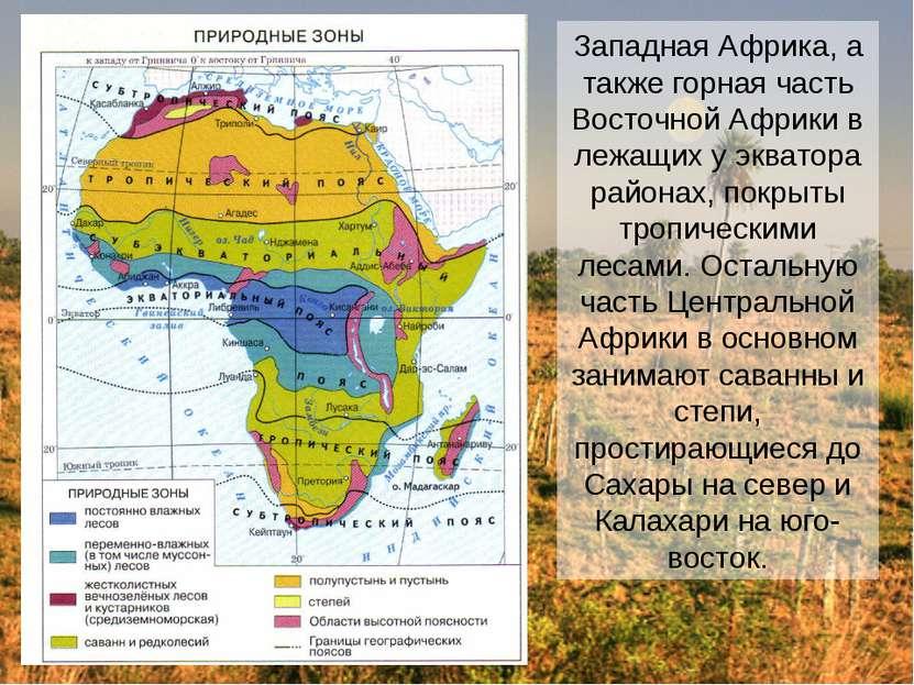 Западная Африка, а также горная часть Восточной Африки в лежащих у экватора р...