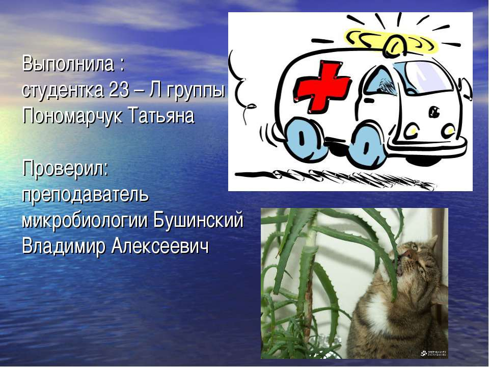 Выполнила : студентка 23 – Л группы Пономарчук Татьяна Проверил: преподавател...