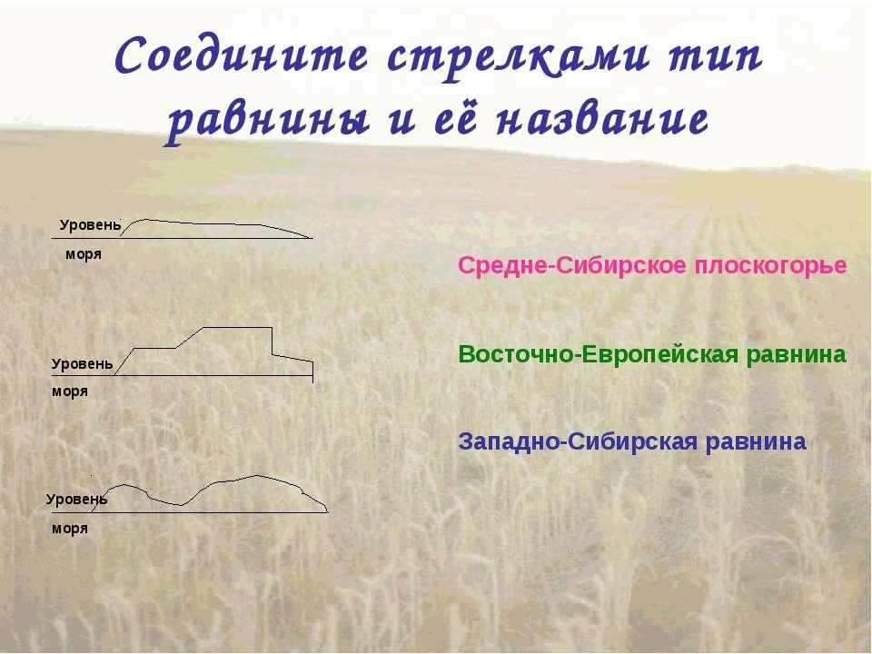 Соедините стрелками тип равнины и её название Восточно-Европейская равнина За...