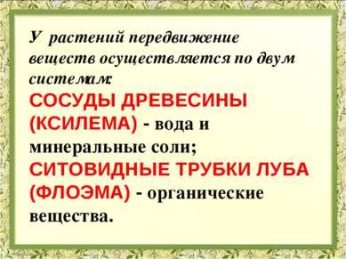 У растений передвижение веществ осуществляется по двум системам: СОСУДЫ ДРЕВЕ...