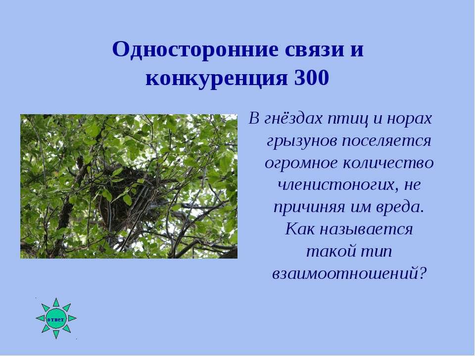 Односторонние связи и конкуренция 300 В гнёздах птиц и норах грызунов поселяе...