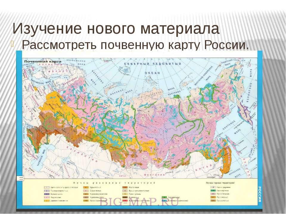 Изучение нового материала Рассмотреть почвенную карту России.