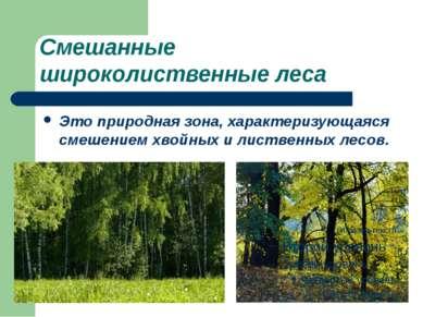 Смешанные широколиственные леса Это природная зона, характеризующаяся смешени...