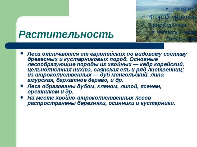 Растительность Леса отличаются от европейских по видовому составу древесных и...