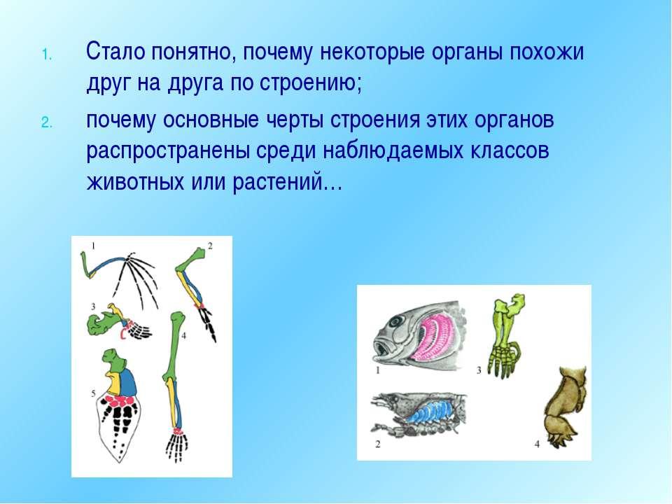 Стало понятно, почему некоторые органы похожи друг на друга по строению; поче...