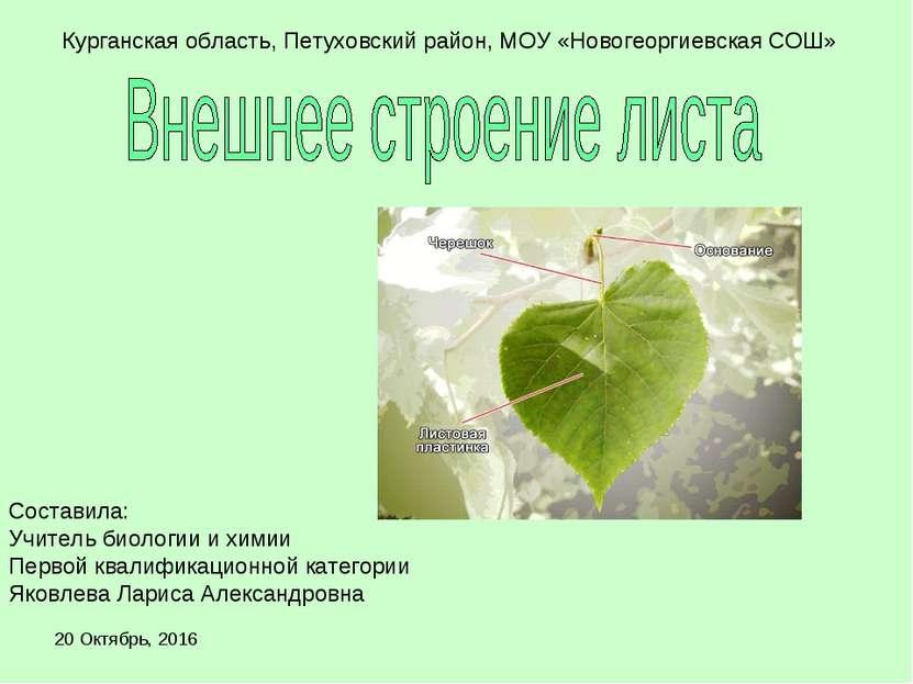 * Курганская область, Петуховский район, МОУ «Новогеоргиевская СОШ» Составила...
