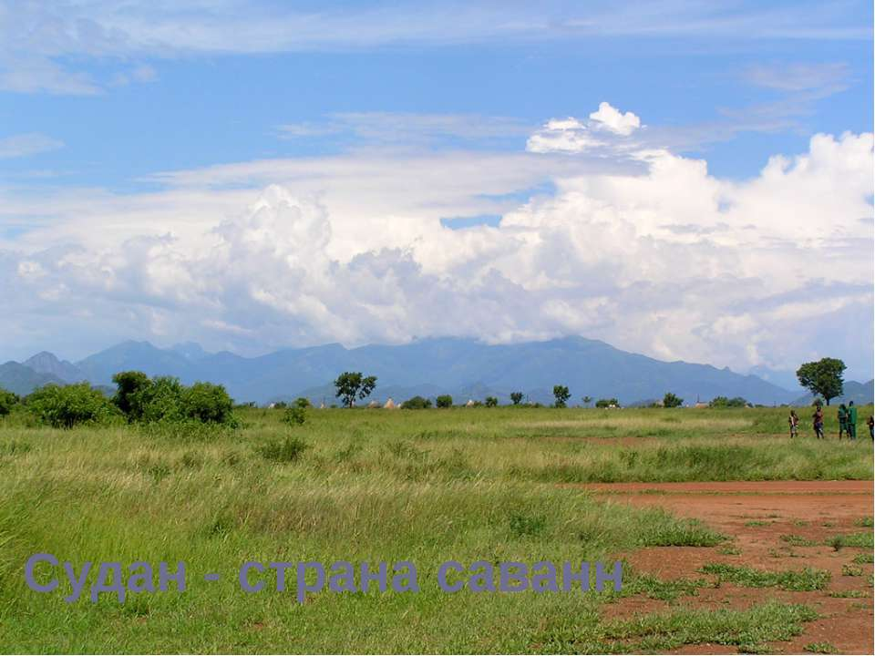 Судан - страна саванн