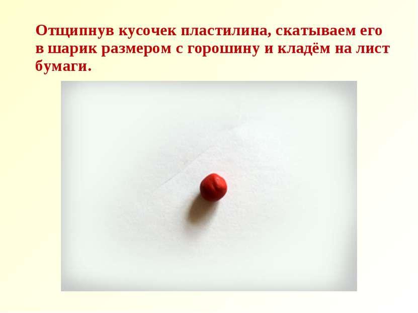 Отщипнув кусочек пластилина, скатываем его в шарик размером с горошину и клад...