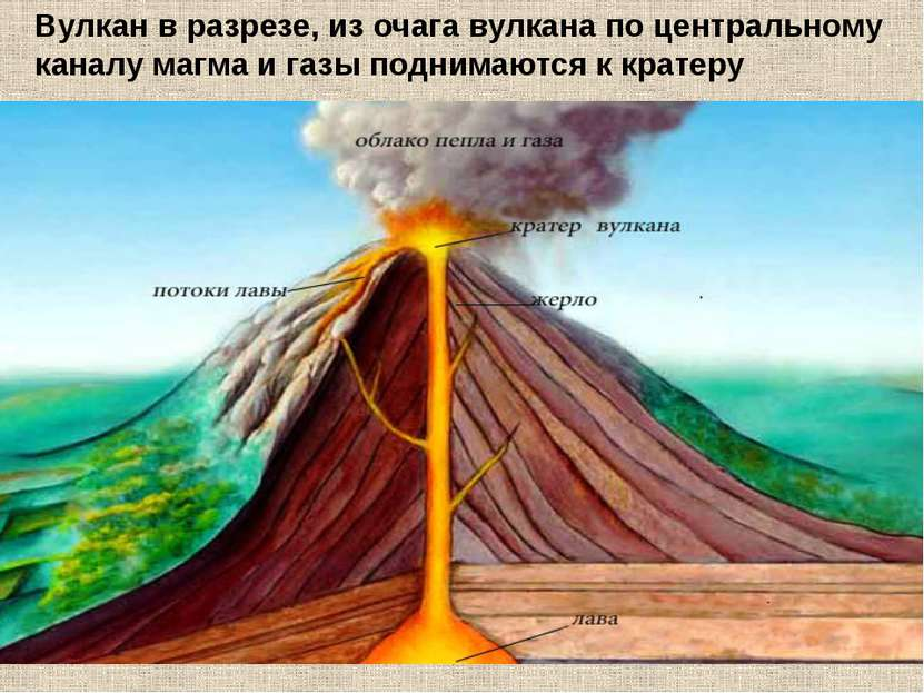 Вулкан в разрезе, из очага вулкана по центральному каналу магма и газы подним...