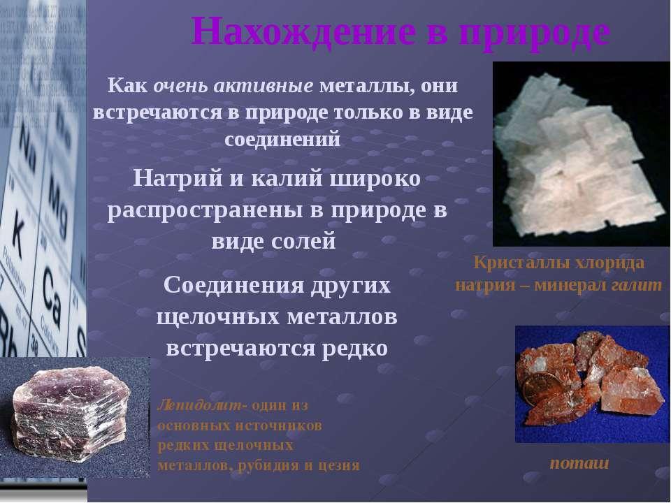 Нахождение в природе Натрий и калий широко распространены в природе в виде со...