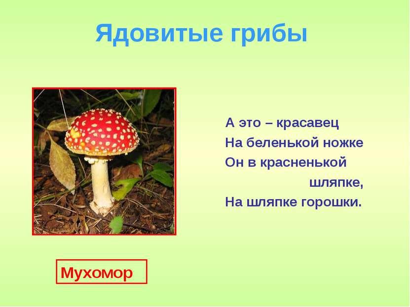 Ядовитые грибы А это – красавец На беленькой ножке Он в красненькой шляпке, Н...