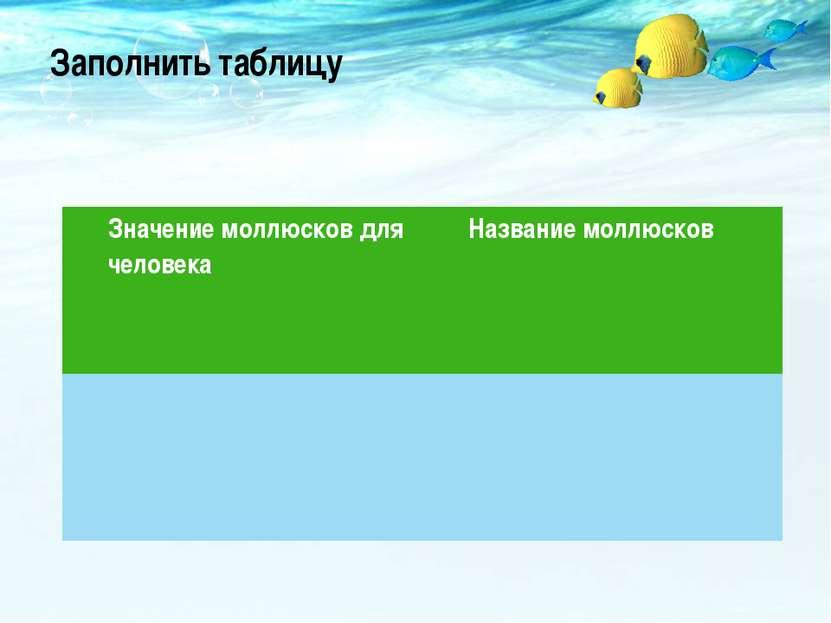 Заполнить таблицу Значение моллюсков для человека Название моллюсков
