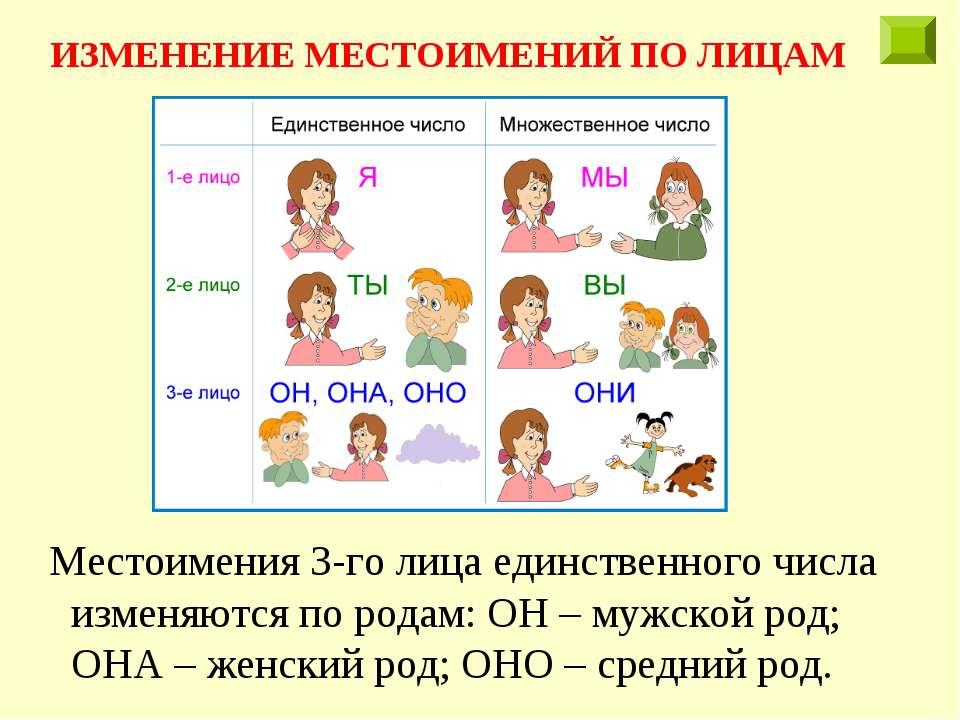 Местоимения 3-го лица единственного числа изменяются по родам: ОН – мужской р...