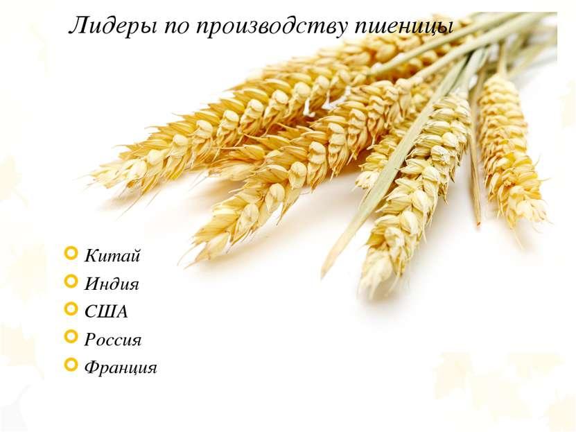 Лидеры по производству пшеницы Китай Индия США Россия Франция