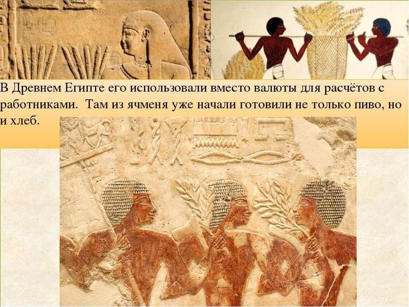 В Древнем Египте его использовали вместо валюты для расчётов с работниками. Т...