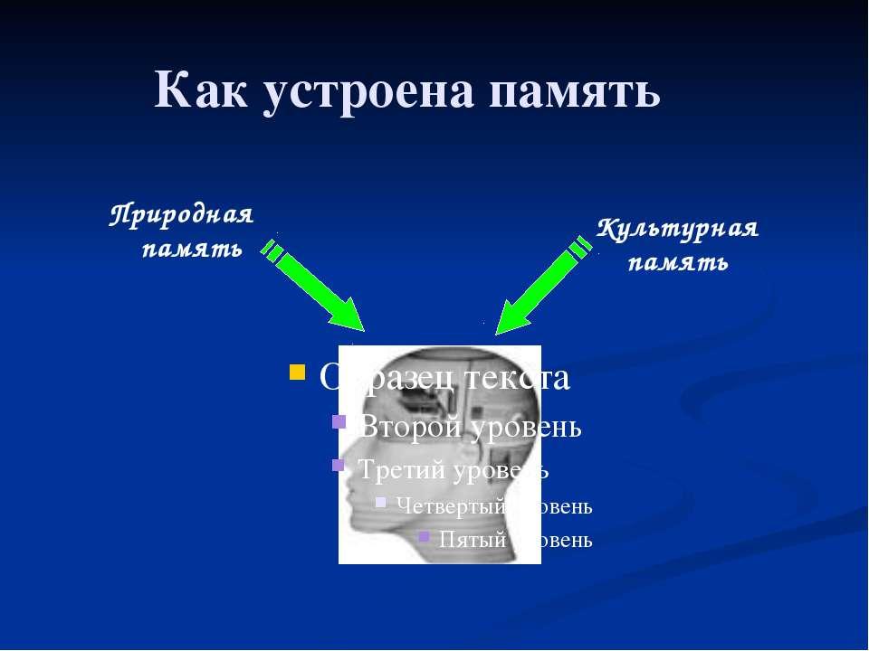 Как устроена память Природная память Культурная память