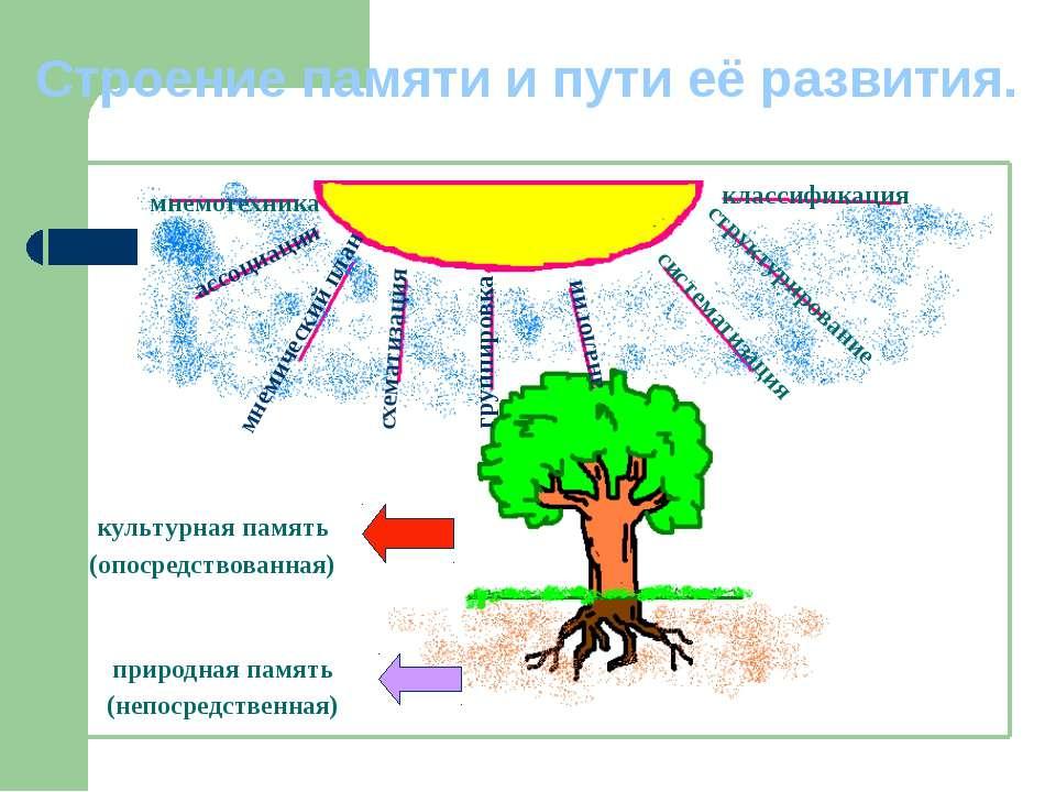Строение памяти и пути её развития. аналогии ассоциации мнемический план схем...