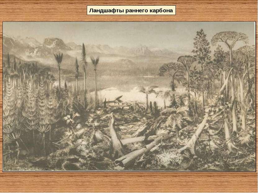 Ландшафты раннего карбона