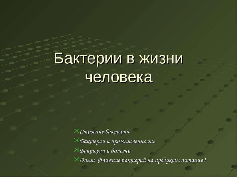 Бактерии в жизни человека Строение бактерий Бактерии и промышленность Бактери...