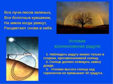 Условия возникновения радуги: Все лучи лесов зеленых, Все болотные кувшинки, ...