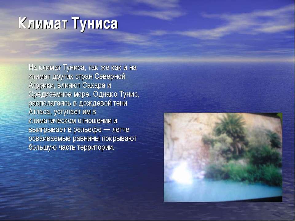 Климат Туниса На климат Туниса, так же как и на климат других стран Северной ...