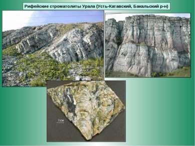 Рифейские строматолиты Урала (Усть-Катавский, Бакальский р-н)