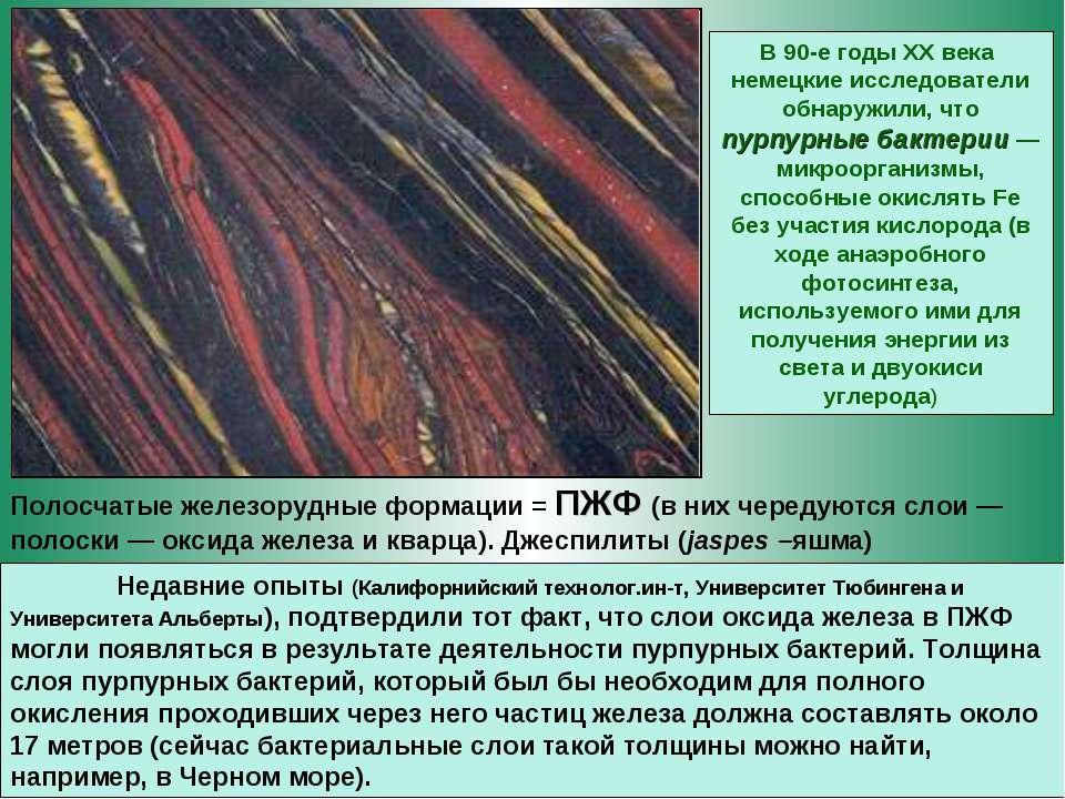Полосчатые железорудные формации = ПЖФ (в них чередуются слои— полоски— окс...