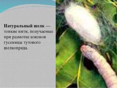 Натуральный шелк — тонкие нити, получаемые при размотке коконов гусеницы туто...