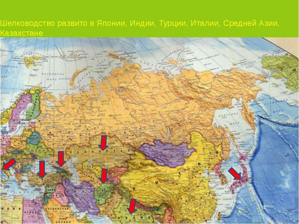 Шелководство развито в Японии, Индии, Турции, Италии, Средней Азии, Казахстан...