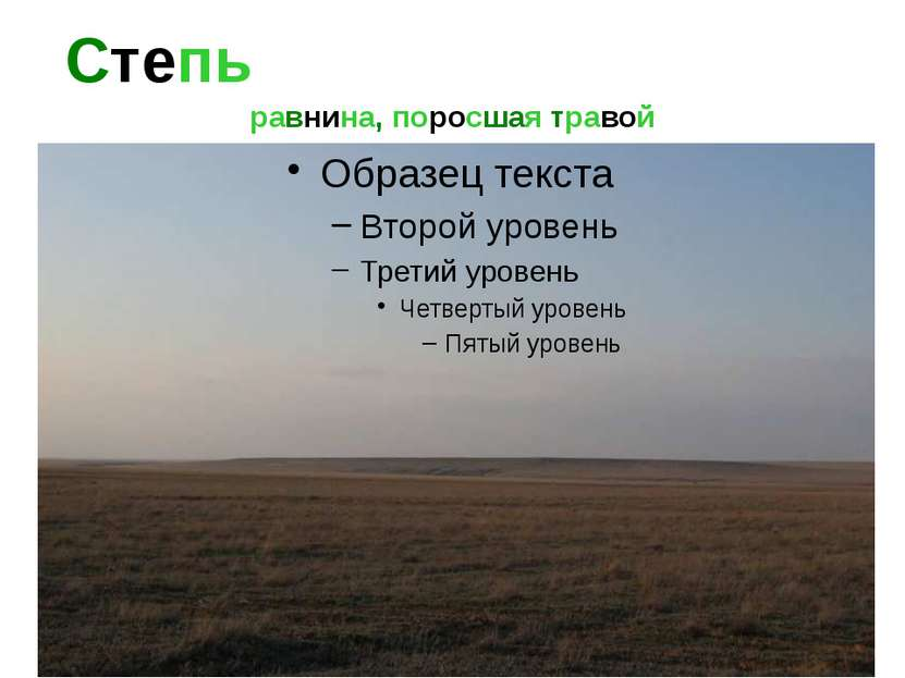 Степь равнина, поросшая травой