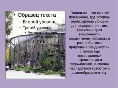 Павильон – это крытое помещение, где созданы необходимые условия для содержан...