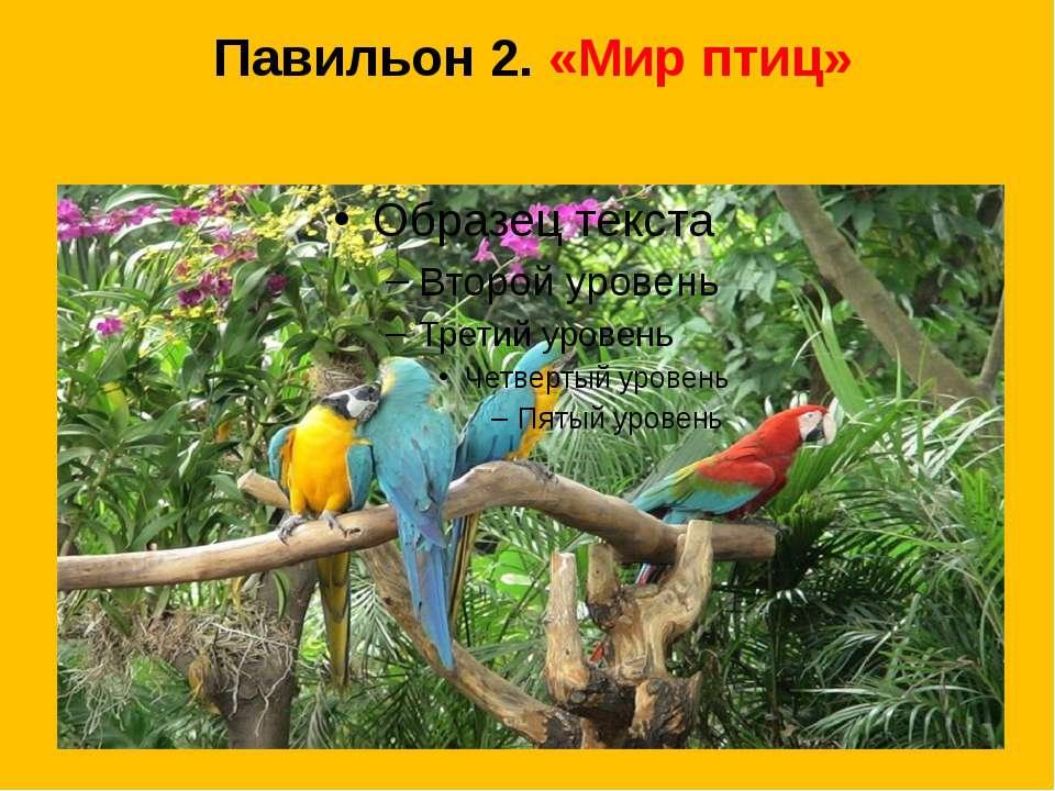 Павильон 2. «Мир птиц»